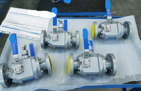 MODULAR DBB FLOATING BALL VALVES